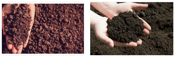 Valor del suelo